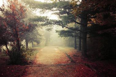 Autumn Walk pt.XIII. by realityDream