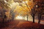 Autumn Walk pt.XVIII.