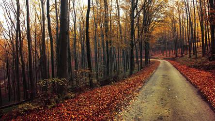 Autumn journey pt.XV.