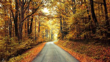Autumn Journey pt.XVII.