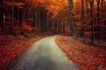Autumn Journey XXII.