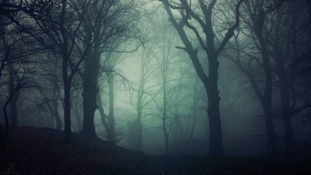 The Dark Eternal Night
