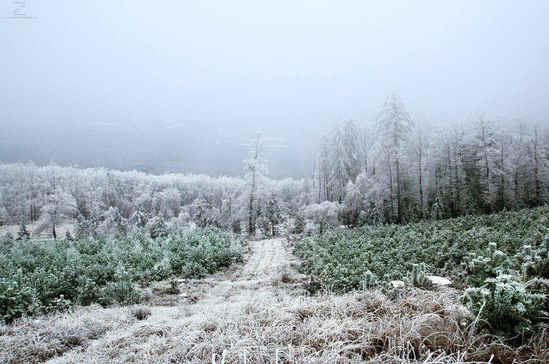 Winter Wonderland I. by realityDream