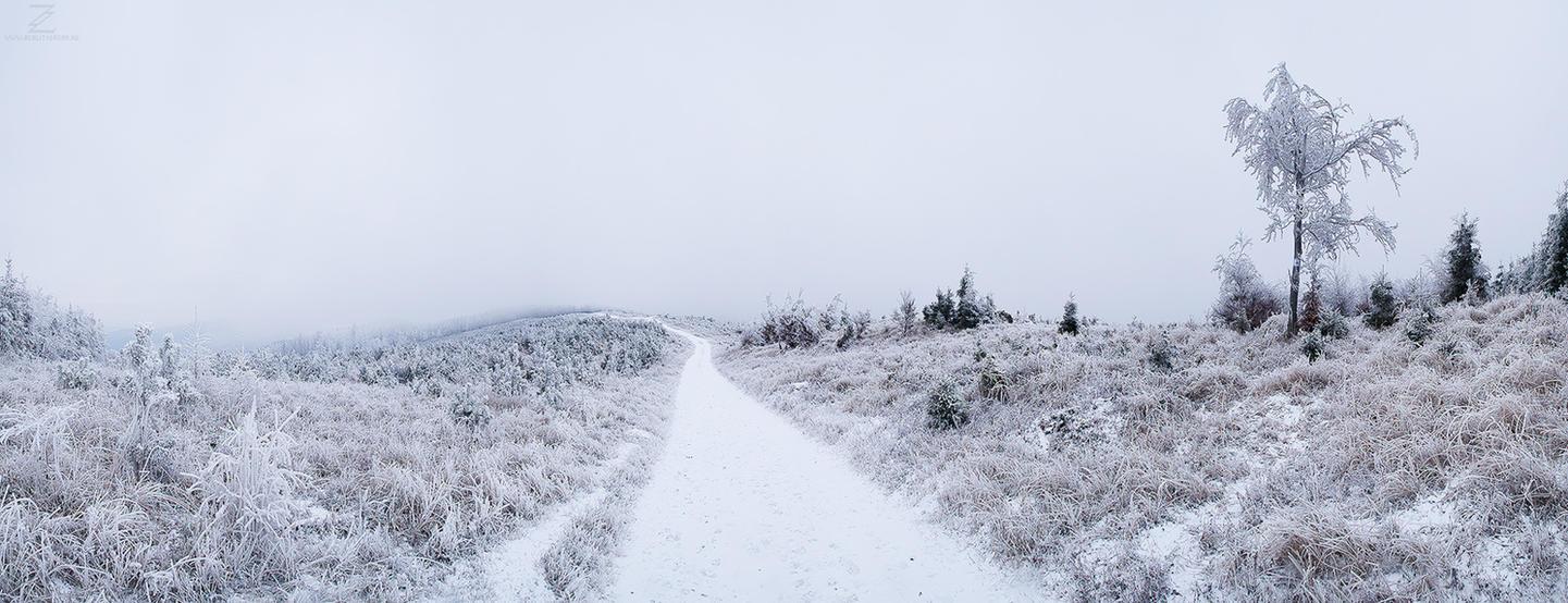 Winter Wonderland II. by realityDream