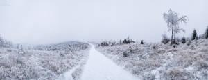 Winter Wonderland II.