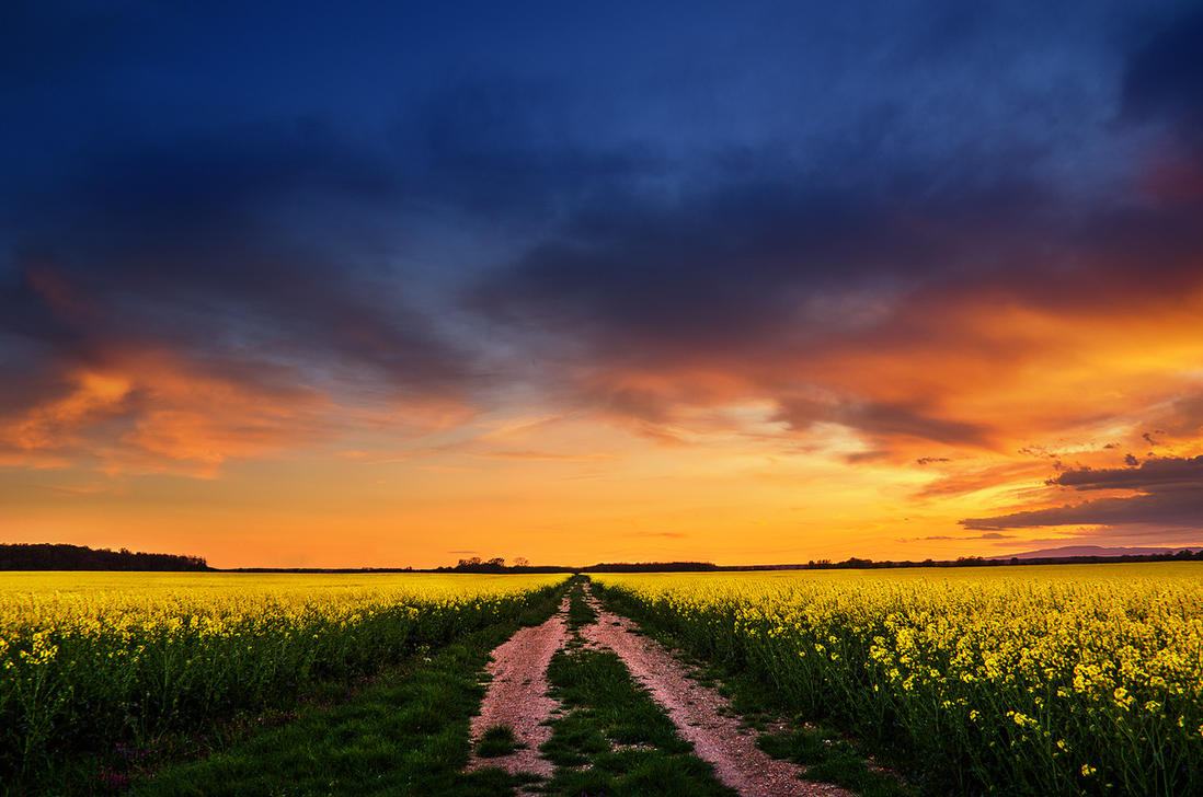 The Luminous Landscape XXIV. by realityDream