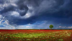 Hungarian skies CCIX.