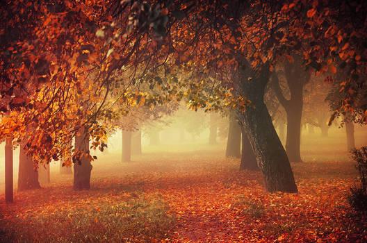 Autumn Dreams I.
