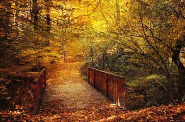 Bridge to Autumn by realityDream