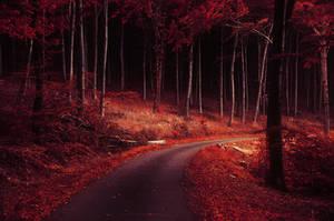 Autumn Journey XXVII. by realityDream