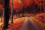 Autumn Journey XXIX.