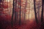 Fading Autumn V.