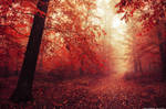 Red Forest V.