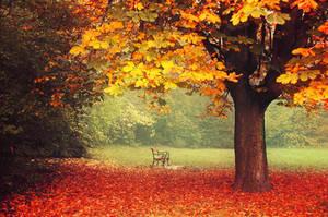 Fall Impressions V. by realityDream