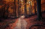 Autumn Walk LXXIV.