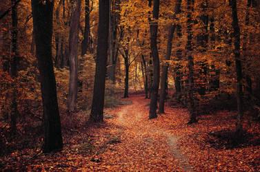 Autumn Walk LXXXI. by realityDream
