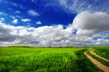 Spring Wheatlands I. by realityDream