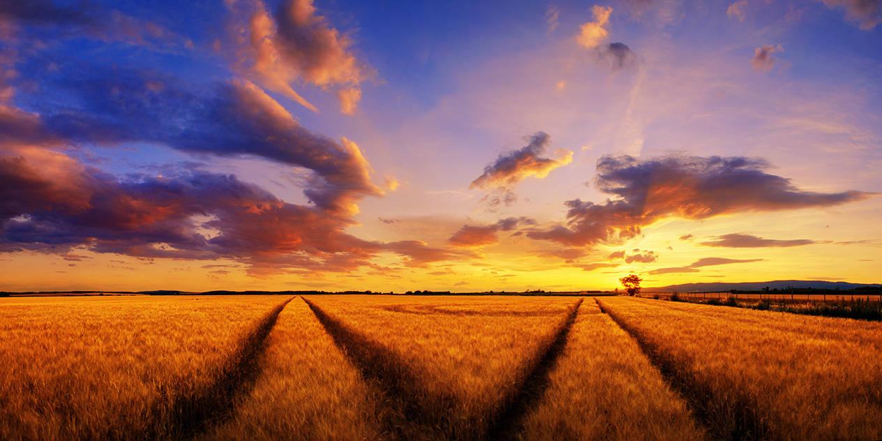 Hungarian skies CCXXXIII. by realityDream