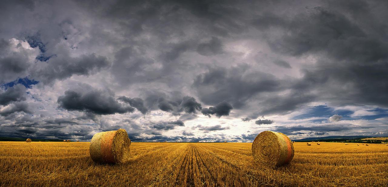 Hungarian skies CCXLVIII.
