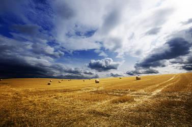 Hungarian countryside XIV.