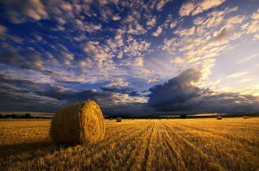 Hungarian countryside XXII.