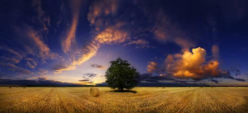Hungarian skies CCL.