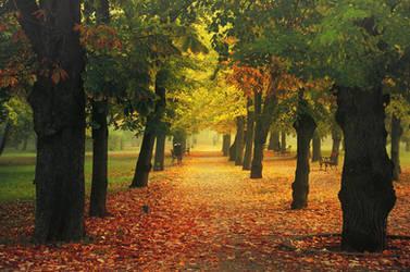 Autumn Walk CLIV.