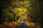 Autumn Journey XXXIV.