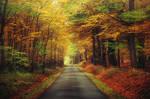 Autumn Journey XXXV.