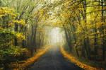 Autumn Journey XXXVIII.