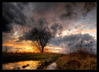 Under a steel sky by realityDream