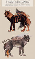 $10 Canine Adopts ( Open ) by svarrook