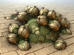 Gourd Patch