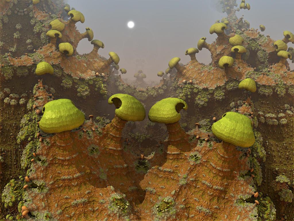 Mountain Mushies by AureliusCat