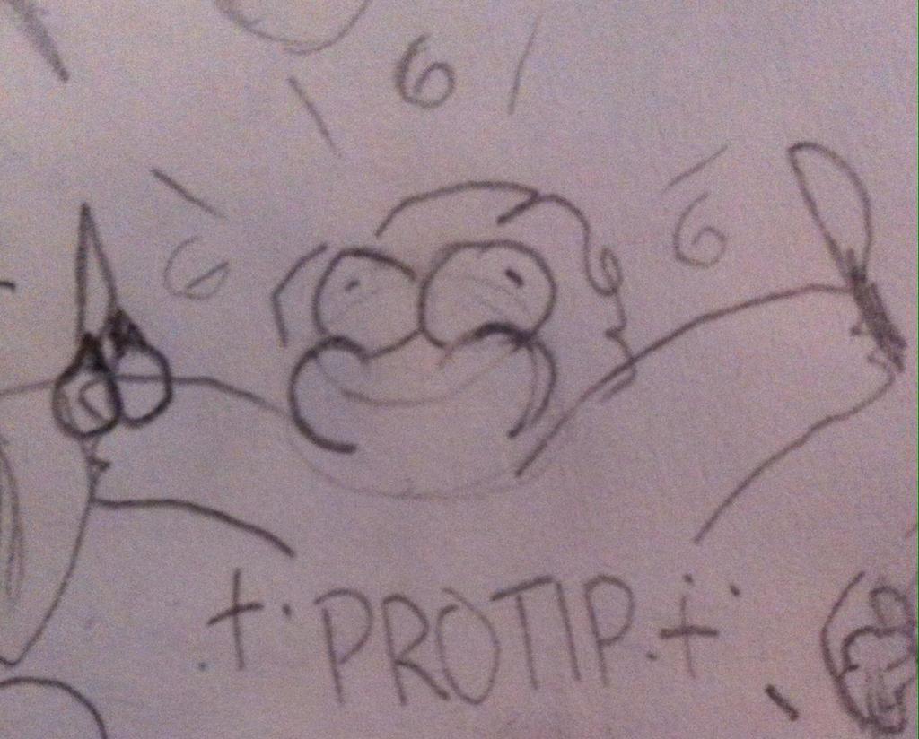 PROTIP by pipa00