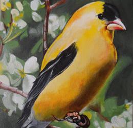 Bird by Launadoon