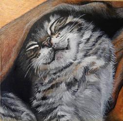 Happy Cat by Launadoon
