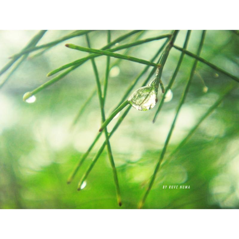 under the mistletoe by VeroxRuvee