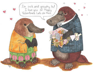 Colorful Platypus Valentines by lunavalse