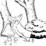 Corgi in the woods