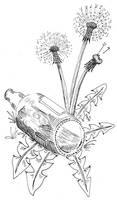 Panopticon illustration