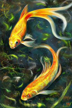 Goldfish speed painting
