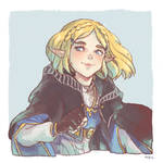 BOTW2 Zelda