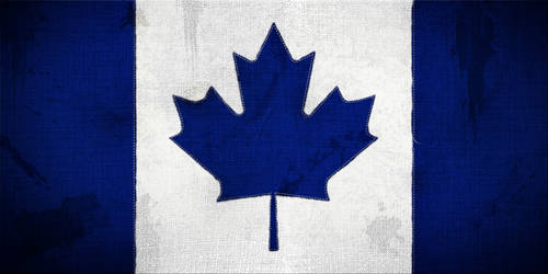 Toronto Maple Leafs Flag