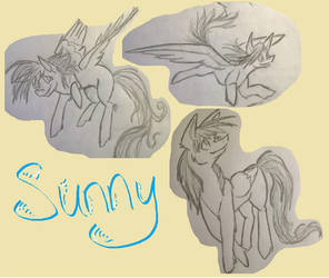 Sunny Sketches