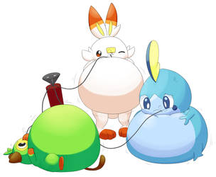 Inflated Gen 8 starters by selphy6