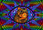 Chat percher by biche--Tordue