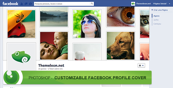 FREE - Photoshop - Customizable Facebook Profile by devzign