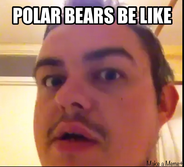 Funny Memes Vines : Image gallery vine memes