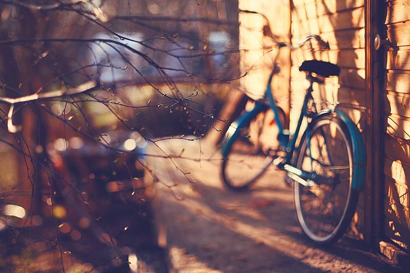 Backyard by Muffinka013
